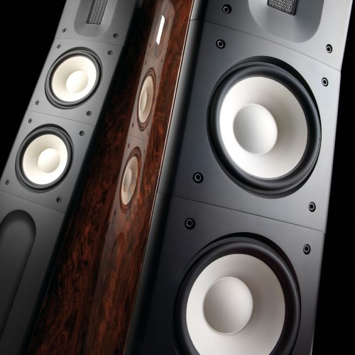 hifi Raidho C2.1 high-end woofer ceramici pavimento dolfihifi firenze