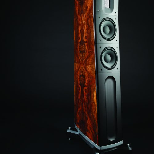 Raidho D2 Diamond woofer dolfi hifi firenze