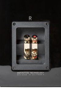 definitive-technology-demand-d-9-diffusori-passivi-da-stand-coppia-Dolfihifi-dolfi-hifi-firenze-dolfihiend-dolfi-hi-end-altafedeltà-alta-fedeltà-sconto-offerta-sconti-offerte-ribassi-offerta speciale-speciale